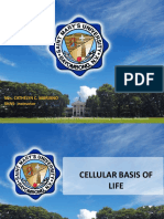 CELL ORGANELLES.pdf