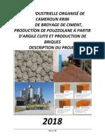 KRIBI (Le Projet de Kribi) (1).pdf