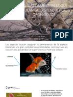 Tema 05.-   Factores Ambientales.pdf
