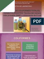 115244965-103266924-Recuento-de-Coliformes-Totales-y-Termotolerantes-E-COLI-1.pdf