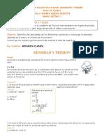 DENSIDAD Y PRESION_PAULAMIELES_DÉCIMO1.docx