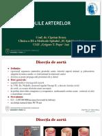 Bolile_Arterelor_2019_2020_CR