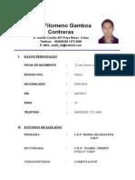 curriculum raul filomeno  gamboa contreras 124