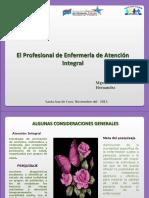 CONFERENCIA  integral2013