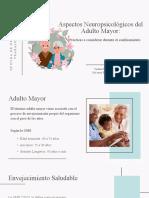 Presentación Adulto Mayor