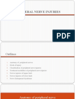 Peripheral nerve injuries- suhaida-2.pptx