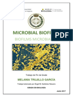 BIOFILMS MICROBIANOS