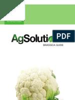BASF Brassica - Crop Guide_FINAL