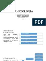 TANATOLOGIA-PRESENTACION POINT