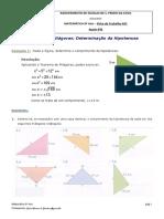 FT2 - Ficha de treino Teorema de Pitágoras