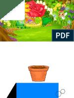 Ciencias 1º las partes de la planta