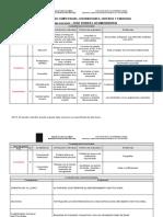 RESUMEN COMPETENCIAS, CONTRIBUCIONES,  CRITERIOS Y EVIDENCIAS (8)