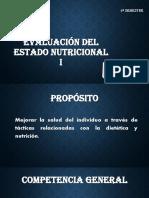 Tamizaje Nutricional.pdf