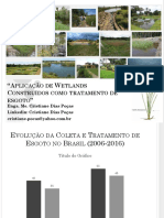 Wetlands-Profa.-Cristiane-Dias-Poças.pptx