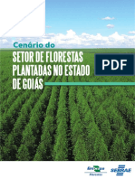 Cenario-do-Setor-de-Florestas-Plantadas-no-Estado-de-Goias