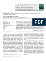 The damage of outer membrane of Escherichia coli in the presence of TiO2
