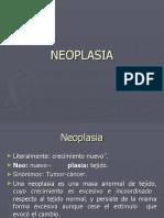 criterios-neoplasias.ppt