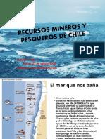RECURSOS MINEROS Y PESQUEROS DE CHILE