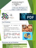 Semana 2 Premedicina Proteinas y Acidos Teoria