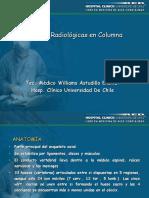 Columna_Vertebral_2008 (PPTshare)