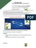 Guía 6 la electricidad forma parte de la vida diaria (2)
