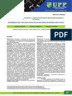 Biorremediación entre MOs y plantas.pdf