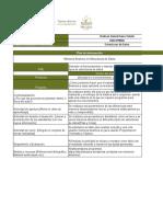 Copia de Plan deIntervension, Jholman Daniel Reina Toledo