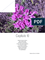 cap 10 O CERRADO E SUAS ATIVIDADES IMPACTANTES.pdf