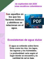 ECOSISTEMAS_ACUATICOS__4_