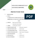PROYECTO-DE-TESIS-ACARO.pdf