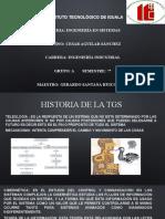 Relatoria Historia de la TGS