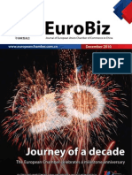 EuroBizDec2010