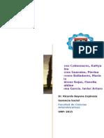 282505756-Proyecto-Gerencia-Social-Modificado.pdf