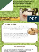 Presentación Conejos Intro a la zootecnica 2204.pdf