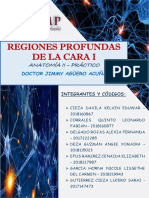 INFORME 4  - ANATOMIA II -  DR. AGÜERO (1)