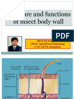 structureandfunctionsofinsectbodywallofinsects-181226130045
