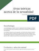 Perspectivas teóricas acerca de la sexualidad