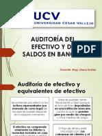 _AUDITORÍA_DE_EFECTIVO.pdf