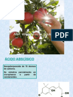 ABA y etileno.pptx