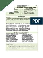 FORMATO BCOficha descriptiva diagnostico