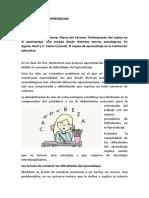 Clase 5.docx