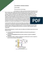 Sistema Reproductor y hormonal femenino.docx