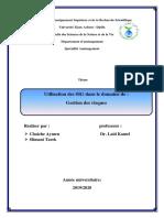 SIG  Gestion des risques.pdf