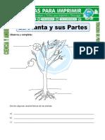 Tercero-de-Primaria-NATURALES-20.