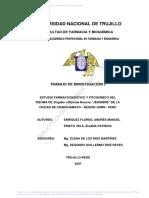 Enriquez Flores Andres Manuel 2007.pdf