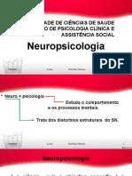 Neuroanatomia funcional.pptx