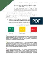 Niveles de Protección y DECLARACION PROTECCION MARITIMA - PBIP