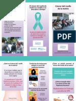 cancer cervico.pdf