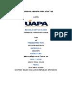 tarea 7 de anatomia (1).docx