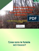 Piergiorgio Terzuolo - La gestione sostenibile e la biodiversità delle foreste